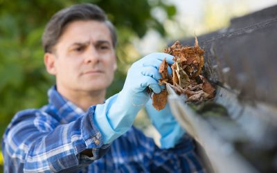 7 Things Every Homeowner Should Know